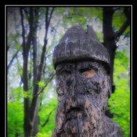 Обитатели Царицынского парка - III :: Victor Vinocurov