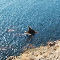Плавник акулы :: Михаил Иршко