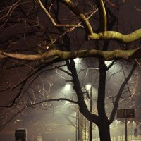 Берег Вислы ночью :: Olga Osipova