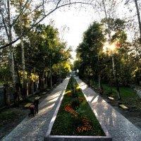 "парк ""Нефтехимик"" :: Konstantin Gubanov"