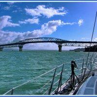 Оклендский мост :: Евгений Печенин