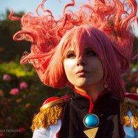 Roses :: Дарья C.Rabbit