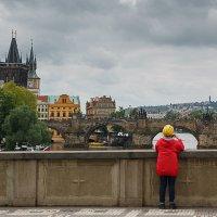 view :: Дмитрий Карышев