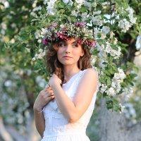Невеста :: Александр Гавриленко