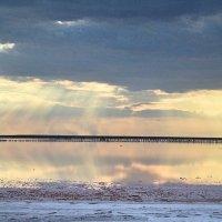 Берег из соли. Азовское море :: Natalie Т.