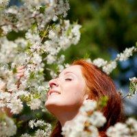 Весна ♥ :: Елена Фалова