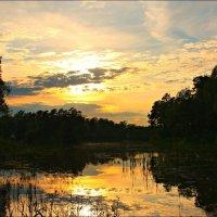 Закат над Быковским прудом :: Olenka