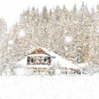 Зима :: Алксандр Тельтевской