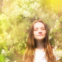 Весенний сон :: Юрий Дмитриев