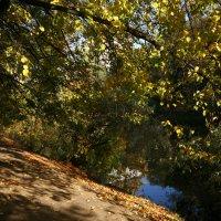 Осенью на Воробьевых горах :: Маргарита