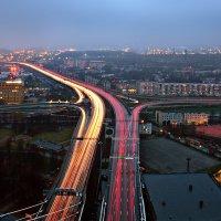 Вантовый мост :: Анна Аринова