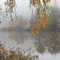 Утро туманное.... :: Olenka