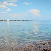 Капшагайское водохранилище :: Вероника Галтыхина