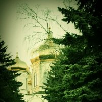 Ставрополь :: Виктория Азарова