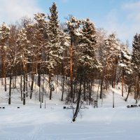 Царицыно зимой :: Маргарита