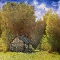 солнечный дом :: Наталья Мунцева