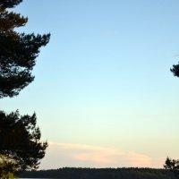 На берегу озера Пено :: Светлана Ульянова