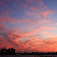Небо как полотно. :: Galina Kazakova
