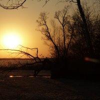 На замерзшем водохранилище :: Анастасия Едакова