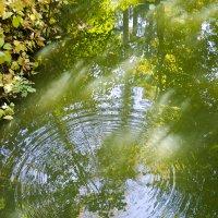 квадрат на воде :: Виктор Пушкин