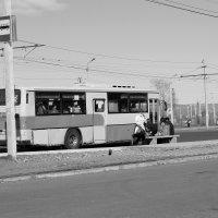 Автобус и уважаемые пассажиры :: Александр Мурзаев