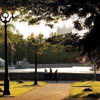 В парке. :: Татьяна Беляева