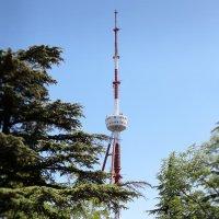 Телебашня,Тбилиси :: meltzer