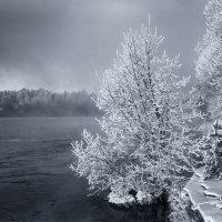 Морозные берега :: Евгений Плетнев