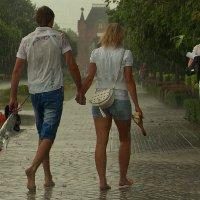 краснодарский дождь :: Дмитрий Чернокальцев