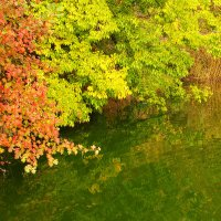 Осень :: Yunna _____