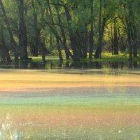Цветное озеро :: Жанна Мальцева