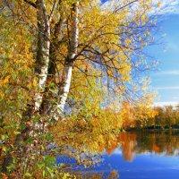 Природа :: Игорь Третьяков
