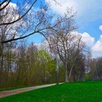 Апрель, апрель... Как весело с тобою на земле... :: Galina Dzubina