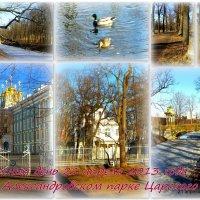 Весна в парке :: Сергей