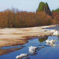 И тают памятью зимы... :: Лесо-Вед (Баранов)