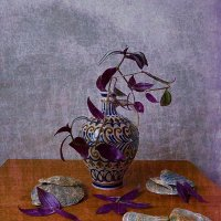 Зебрина в вазе и створки раковин :: Nina Yudicheva