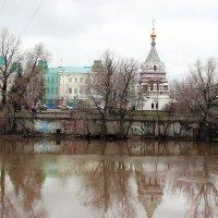 Земная красота :: раиса Орловская