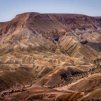 В пустыне Негев :: Тиша
