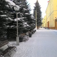 Скоро весна:) :: Владимир Звягин