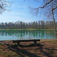 Волнуют душу радостные вёсны,  Когда любовью полнится земля... :: Galina Dzubina