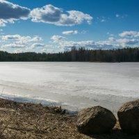 озеро Кивиярви :: Элла Ш.