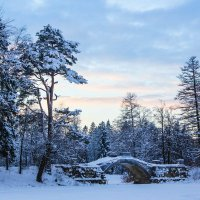 Зимний пейзаж :: Алёнка Шапран