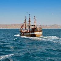 В море :: Дмитрий С.