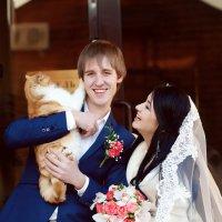 Тили, тили, тесто!!! Жених, невеста и котик!!! :: Олеся Шаповалова