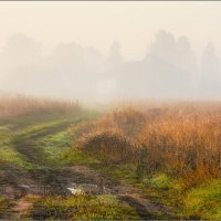 Осень, туман, рассвет... :: Александр Никитинский