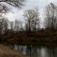 Река в осенней тишине :: Виктор Коршунов