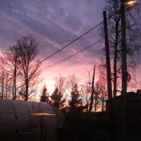 Нежный вечерний закат :: Валерия