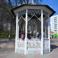 Апрель. Городской парк :: Наталья Тагирова