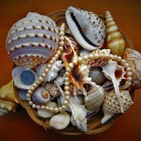 Подарки Андаманского моря :: Сергей Чиняев