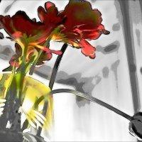 Тюльпаны. :: Ирина Сивовол